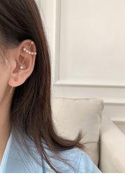 Unilateral Crystal Rod Earrings