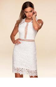 Day Dreamer {Color} Lace Bodycon Dress