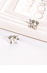 Simply Love Crystal Earrings