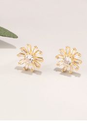 Fractile Earrings