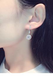 Exquisite Rhinestone Drop Earrings