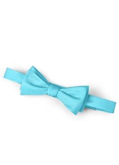 Gentlemen's Collection Bow Tie