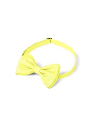 Gentlemen's Collection Boy's pre-tied bow tie