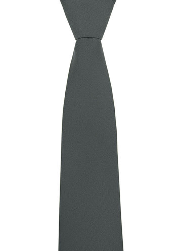 back_Gentlemen's Collection Suiting Style Skinny Tie