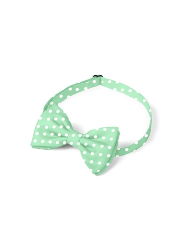 Gentlemen's Collection Boy's pre-tied Polka Dots bow tie