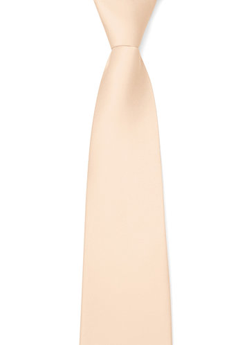 back_Gentlemen's Collection Matte Satin Wide Tie