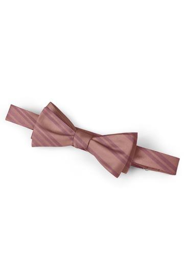 Gentlemen's Collection Stripes Bow Tie