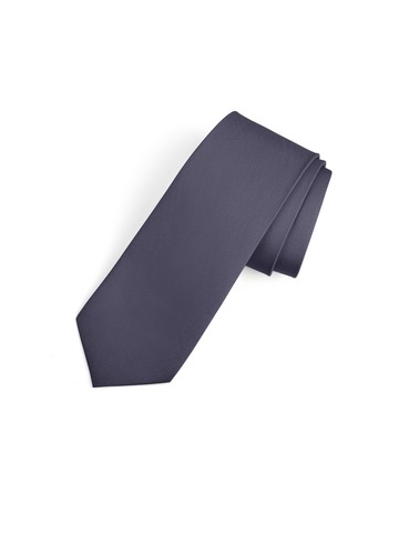 Gentlemen's Collection Skinny Tie