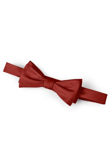 Gentlemen's Collection Bow Tie