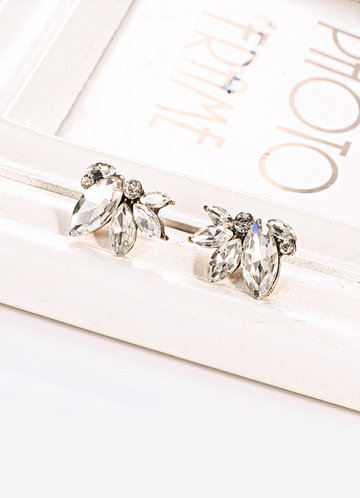 Simply Love Crystal Earrings