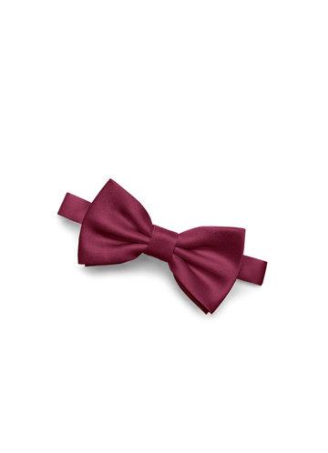 Gentlemen's Collection Boy's Matte Satin pre-tied bow tie
