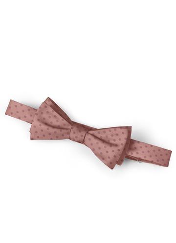 Gentlemen's Collection Pin Dots Bow Tie