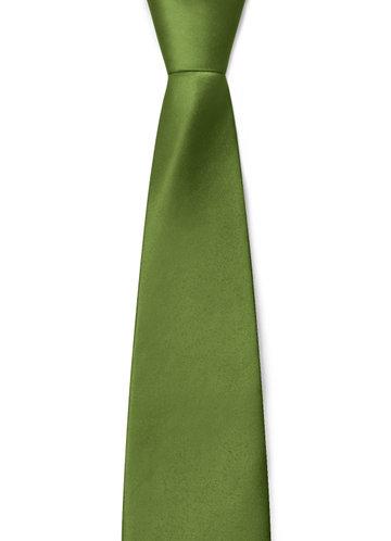 front_Gentlemen's Collection Boy's Matte Satin Neck Tie