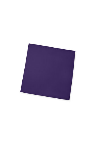Gentlemen's Collection Matte Satin Pocket Square
