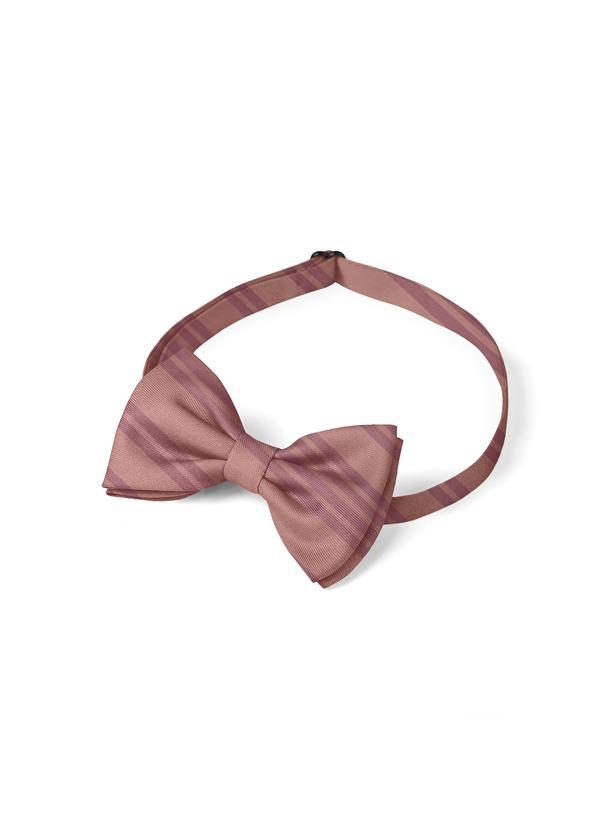 Gentlemen's Collection Boy's pre-tied Stripes bow tie