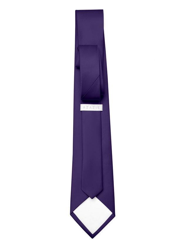 Gentlemen's Collection Matte Satin Wide Tie