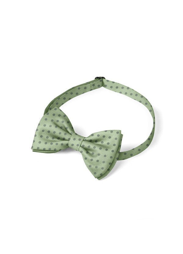 Gentlemen's Collection Boy's pre-tied Pin Dots bow tie
